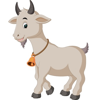 Obrazy: Koza | Darmowe wektory, zdjęcia stockowe i PSD