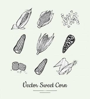Słodka kukurydza, kukurydza, kukurydza na białym tle wektor zestaw produktów spożywczych