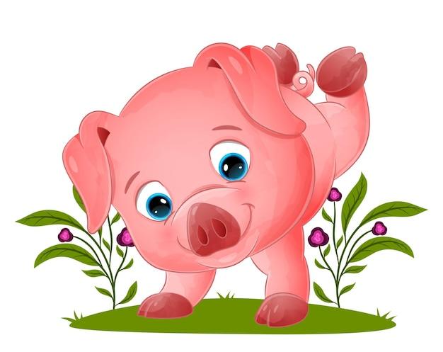 Słodka świnia stoi na rękach w ogrodzie ilustracji