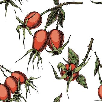 Słodka wrzośca na gałęzi bez szwu