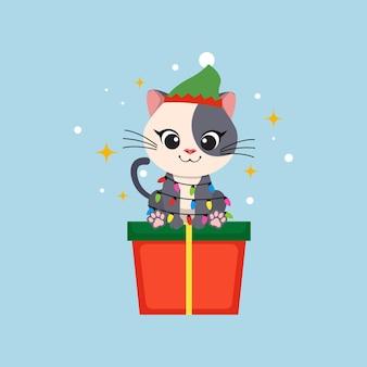 Słodki bożonarodzeniowy kot siedzi na pudełku prezentowym