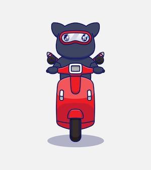 Słodki kot ninja jeżdżący na skuterze