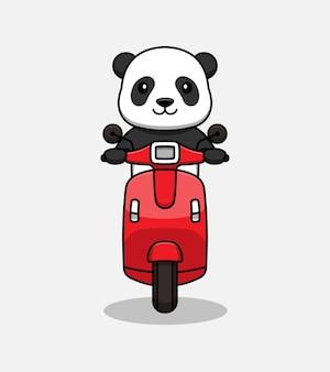 Słodki kot panda jedzie na skuterze