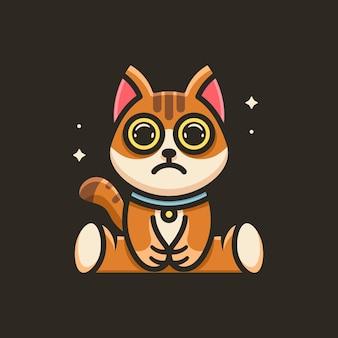 Słodki kot z logo gwiazd