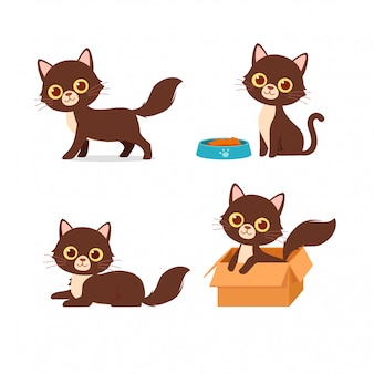 Słodki kot zwierzę domowe gra zestaw stylu pozy