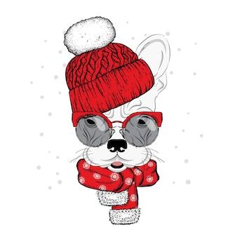 Słodki pies w świątecznych zimowych i noworocznych ubraniach