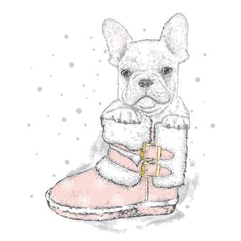 Słodki pies w ubraniach zimowych i noworocznych