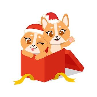 Słodki shiba inu świętuje boże narodzenie w prezentowym pudełku