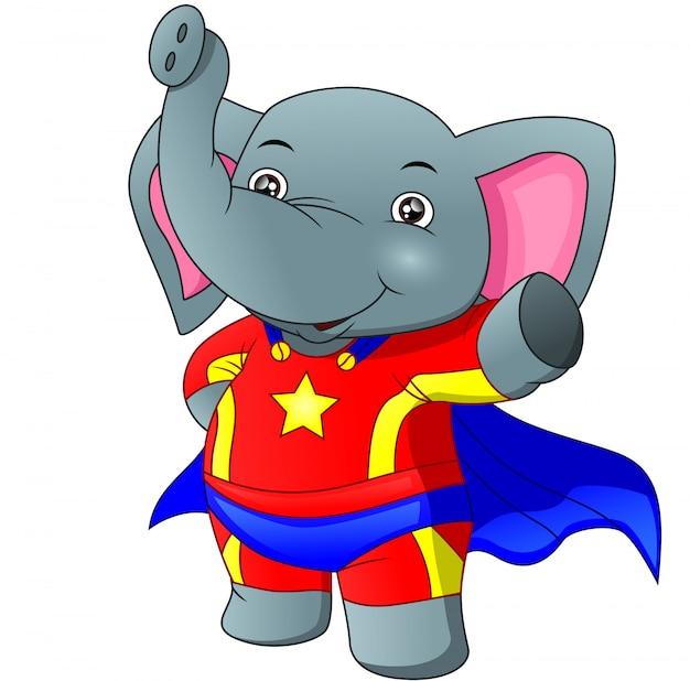 Słodki słoń noszący superbohatera custume
