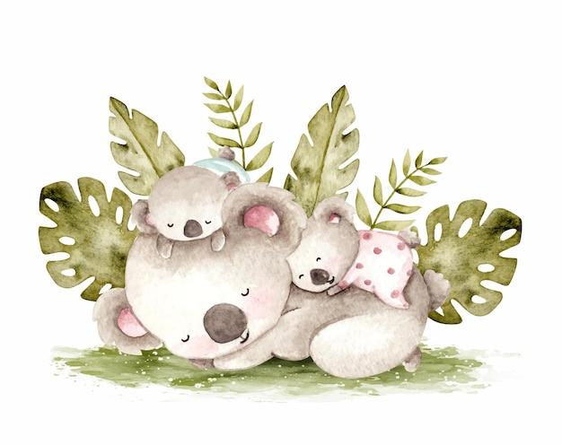 Słodkie koale spanie akwarela ilustracja