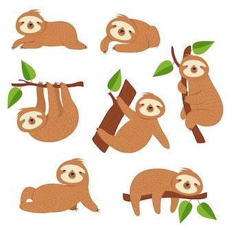 Słodkie leniwce. lenistwo kreskówka wiszące na gałęzi drzewa. postacie zwierząt z dżungli