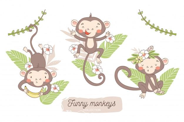 Słodkie małpkie dziecko. postać z kreskówki zwierząt dżungli.