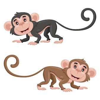 Słodkie małpy kreskówki