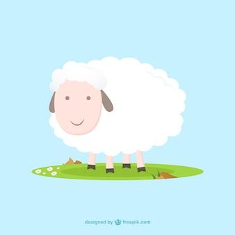 Słodkie owiec