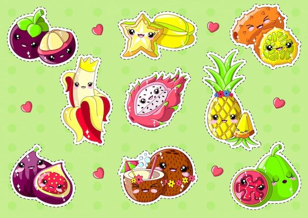 Słodkie owoce egzotyczne na zielonym tle.