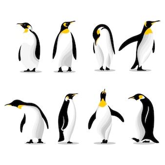 Słodkie pingwiny w różnych pozach zestaw ilustracji