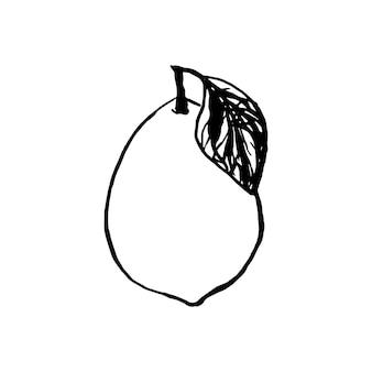 Słodkie pojedyncze ręcznie rysowane cytryny do menu lub przepisu. ilustracja wektorowa zbiory. świeże i smaczne.