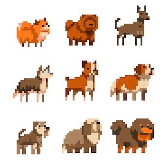 Słodkie psy sztuki pikseli zestaw ilustracji na białym tle