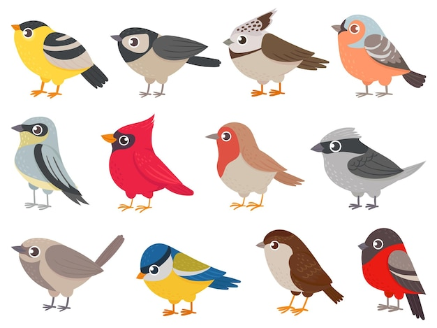 Słodkie ptaki. ręcznie rysowane małe kolorowe ptaki, postacie zwierząt do druku karty, dekoracje ogrodowe. elementy dla dziecinny plakat wektor zestaw. ptak natura rysunek, fauna zwierzę naturalne zoo ilustracja