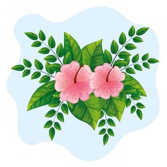 Słodkie różowe kwiaty z liśćmi