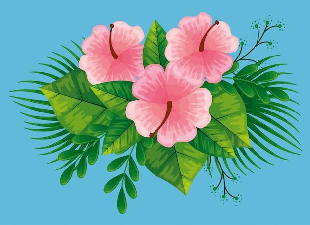 Słodkie różowe kwiaty z tropikalnymi liśćmi