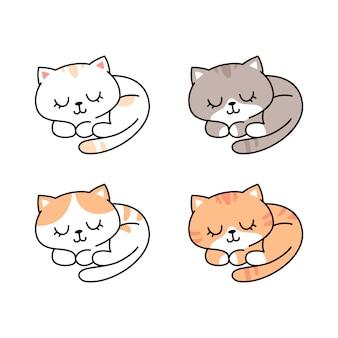 Słodkie śpiące koty w różnych rasach i kolorach