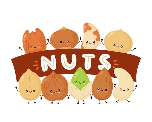 Słodkie szczęśliwe orzechy. postać z kreskówki. orzechy ziemne, orzechy laskowe, orzechy włoskie, orzechy brazylijskie, pistacje, orzechy nerkowca, orzechy pekan, migdały