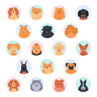 Słodkie twarze zwierząt. słodka głowa psa. pudel, zabawny yorkshire terrier, szpic pomorski i labrador retriever. zestaw ilustracji kaganiec rasowych psów. okrągłe awatary z profili społecznościowych. ikony