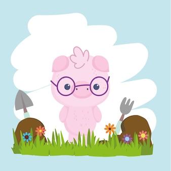 Słodkie zwierzę świnia pig