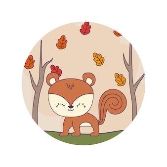 Słodkie zwierzę wiewiórki na scenie leśnej