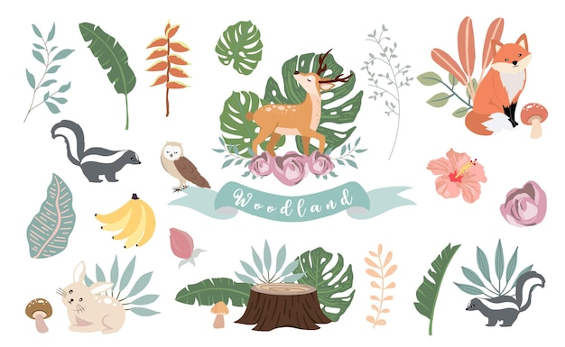 Słodkie zwierzę z niedźwiedziem, sową, lisem, skunksem, grzybem i liśćmi