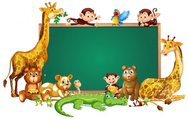 Słodkie zwierzęta chalkborad ramki