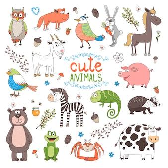 Słodkie zwierzęta na białym tle