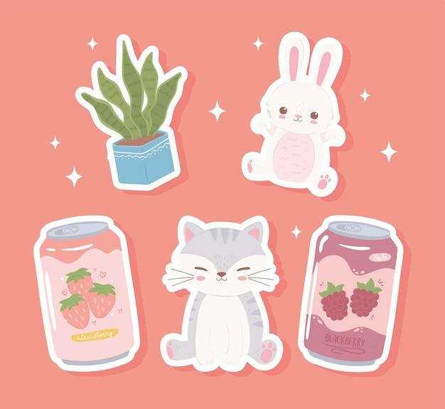 Słodkie zwierzęta soda