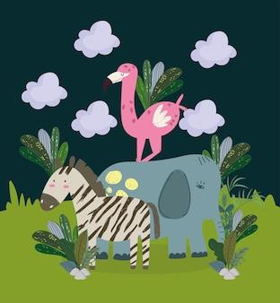 Słodkie zwierzęta z dżungli