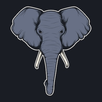 Słoń głowa tle