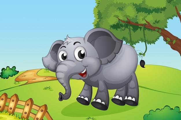 Słoń skacze wewnątrz drewnianego ogrodzenia