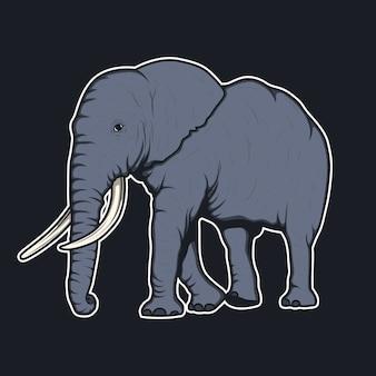 Słoń wzór tła