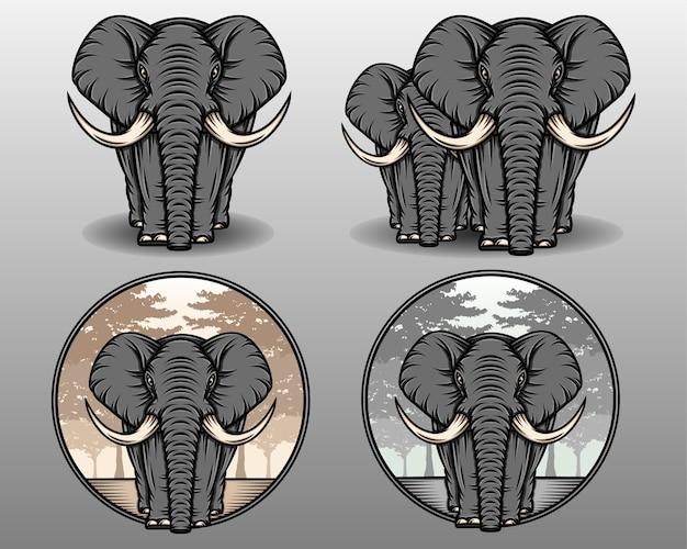 Słoń zestaw ilustracji.