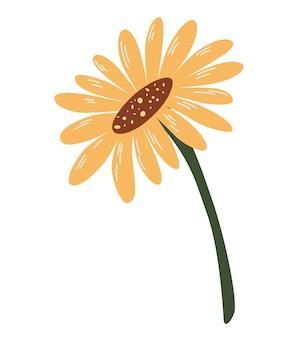 Słonecznik. ładny jesień ręcznie rysowane kwiat. ilustracja wektorowa.