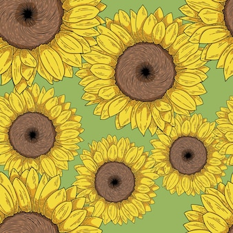 Słonecznik ręcznie rysowane wektor ilustracja wzór seamless