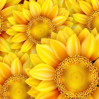 Słonecznik wysokiej jakości ilustracji.