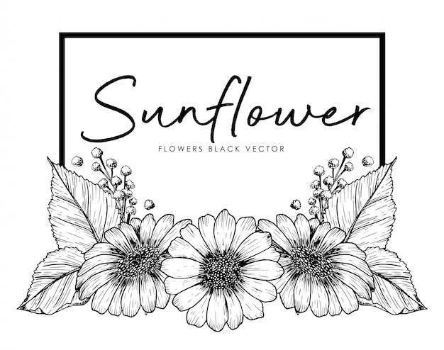 Słoneczniki ręcznie rysowane grafiki ilustracja na białym tle