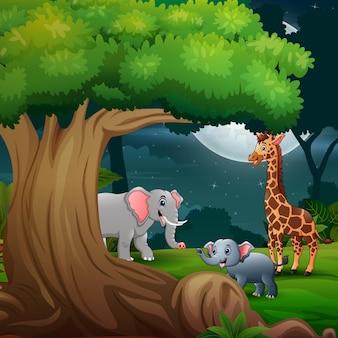 Słonie rysunkowe i żyrafa w dżungli w nocy