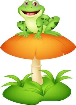 Śmieszna żaba siedzi na grzyby