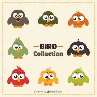 Śmieszne kolekcja ptaków