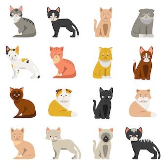 Śmieszne koty w stylu płaski. izolować