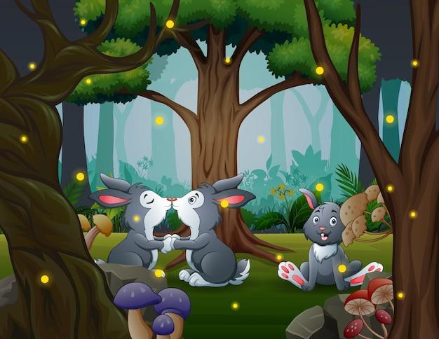 Śmieszne króliczki w parku