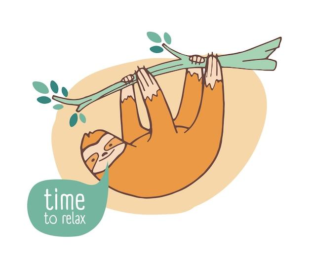 Śmieszne leniwiec szczęśliwy zwisający z gałęzi