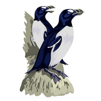 Śmieszne pingwiny w różnych pozach akcji. kreskówka maskotki izolować. para pingwinów zwierząt ptaków.